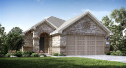 Photo of 25722 Bottlebrush Sedge Street, Katy, TX 77493 (MLS # 78789980)