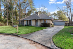 Photo of 3822 Hill Springs Drive, Houston, TX 77345 (MLS # 79544184)