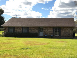 Photo of 3319 County Road 347, Brazoria, TX 77422 (MLS # 79643838)