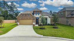 Photo of 2746 Broad Timbers Drive, Spring, TX 77373 (MLS # 80604477)