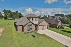 Photo of 15778 Kitty Hawk Drive, Waller, TX 77484 (MLS # 80742067)