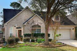 Photo of 27 Veranda View Place, The Woodlands, TX 77384 (MLS # 81443648)