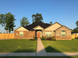 Photo of 105 Mason Drive, Dayton, TX 77535 (MLS # 81520501)