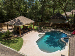 Photo of 15 Firefall Court, The Woodlands, TX 77380 (MLS # 81835564)