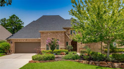 Photo of 74 Lake Reverie Place, The Woodlands, TX 77375 (MLS # 82258964)