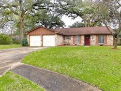 Photo of 56 ASH Court, Lake Jackson, TX 77566 (MLS # 82789448)