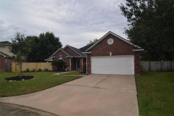 Photo of 6602 Autumn Flowers Drive, Katy, TX 77449 (MLS # 84267858)