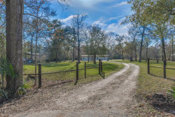 Photo of 20231 Shady Lane, Crosby, TX 77532 (MLS # 85210626)