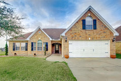 Photo of 3818 Candlewood Circle, Needville, TX 77461 (MLS # 85224069)