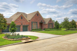 Photo of 39 Spring Basket Trail, The Woodlands, TX 77389 (MLS # 85789843)