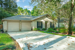 Photo of 35 N Wavy Oak Circle, The Woodlands, TX 77381 (MLS # 85977422)