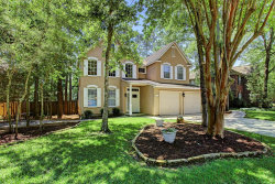 Photo of 190 Purple Slate Place, The Woodlands, TX 77381 (MLS # 87498059)
