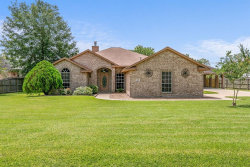 Photo of 302 Oaks Grande Road, Baytown, TX 77523 (MLS # 87602049)