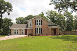 Photo of 324 Buffalo Trail, Lake Jackson, TX 77566 (MLS # 89424447)