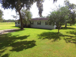 Photo of 3991 County Road 348, Brazoria, TX 77422 (MLS # 90098163)