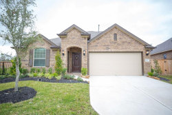 Photo of 16907 Lady Bird Lake Court, Cypress, TX 77433 (MLS # 91695482)