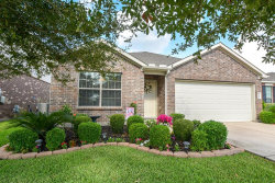 Photo of 5823 Camelia Evergreen Lane, Richmond, TX 77407 (MLS # 92307580)