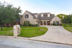 Photo of 12652 Lake Vista Dr Drive, Willis, TX 77318 (MLS # 95086068)