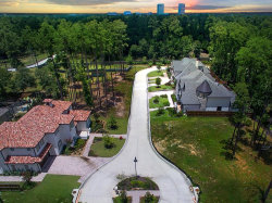 Photo of 8 Honey Daffodil Place, The Woodlands, TX 77380 (MLS # 95873260)