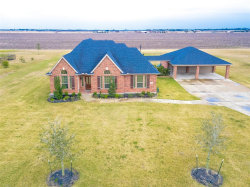 Photo of 10627 Caddo Lake Drive, Needville, TX 77461 (MLS # 95997685)