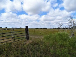 Photo of 9123 County Road 273, East Bernard, TX 77435 (MLS # 12548145)