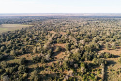 Photo of 0 Dewberry Lane, Louise, TX 77455 (MLS # 3589078)