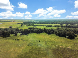 Photo of 00 County Rd 125, Hungerford, TX 77488 (MLS # 44404718)