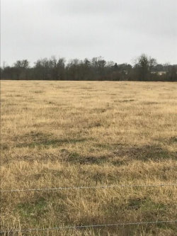 Photo of 0 Mixville Rd Road, Sealy, TX 77474 (MLS # 46902551)