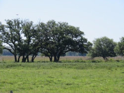 Photo of 0000 Farm to Market 1300, El Campo, TX 77437 (MLS # 47969942)