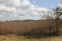 Photo of 000 County Road 103, Boling, TX 77420 (MLS # 49636743)