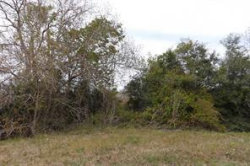 Photo of 0000 County Rd 382, Louise, TX 77455 (MLS # 51753597)