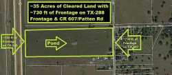 Photo of 0 County Road 607, Angleton, TX 77515 (MLS # 5638956)