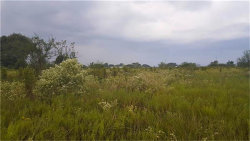 Photo of 408 County Road 218, Hungerford, TX 77448 (MLS # 71464899)
