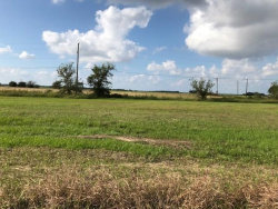 Photo of 0 County Rd 382, Louise, TX 77455 (MLS # 71794785)