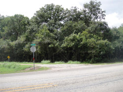 Photo of 0 County Rd 151, Boling, TX 77420 (MLS # 7863457)