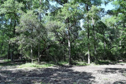 Photo of 00 Deer Trail Drive, Wharton, TX 77488 (MLS # 79848114)
