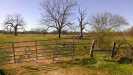 Photo of 2614 Peach Ridge Road, Brookshire, TX 77423 (MLS # 82835598)