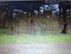 Photo of 0 County Road 165, Boling, TX 77420 (MLS # 16149191)