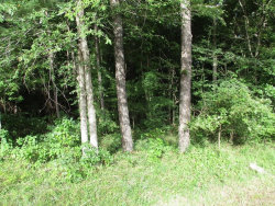 Photo of TBD Willowick Ln Lane, Onalaska, TX 77351 (MLS # 16765502)