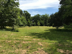 Photo of 0 Bryan, Boling, TX 77420 (MLS # 19824358)