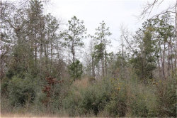 Tiny photo for 0 Carl Road, Spring, TX 77373 (MLS # 43396056)