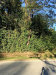 Photo of 0 Mossy Oaks Road, Spring, TX 77389 (MLS # 44212720)