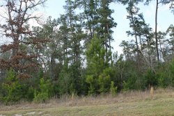 Tiny photo for 27619 W Balsam Fir Circle, Spring, TX 77386 (MLS # 45226241)