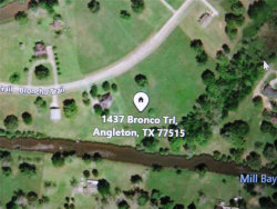 Photo of 1437 Bronco Trail, Angleton, TX 77515 (MLS # 48873381)