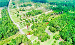 Photo of 18399 Old Houston Road, Conroe, TX 77302 (MLS # 52774197)