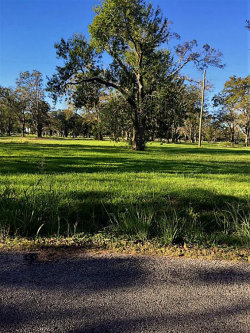 Photo of 0000 Newgulf, Boling, TX 77420 (MLS # 55029713)