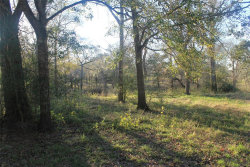 Photo of 214 County Road 875, West Columbia, TX 77486 (MLS # 62234351)