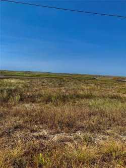 Photo of 0 Palm Lot 15 Street, Freeport, TX 77541 (MLS # 67391741)