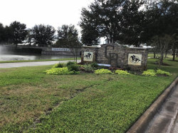 Photo of 22218 Chenango Lake Drive, Angleton, TX 77515 (MLS # 69703757)