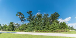 Tiny photo for 27906 Hansons Court, Spring, TX 77386 (MLS # 71089878)
